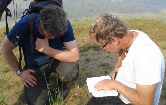 Overzicht wijzigingen Heukels' flora voor ecologen